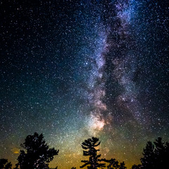 Love the Milky Way